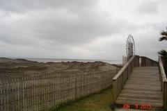 sandproject14005_1
