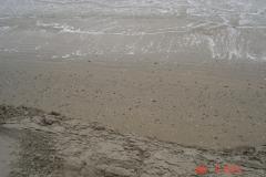 sandproject14015_3