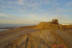sandproject17004_14