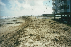 1999seascape_grounds22_2